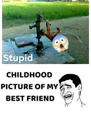 Funniest Pictures on the Internet | Free Funny Images | Funny Comedy Pics