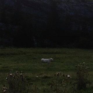 Ulla - Limitless Frame Music Album Reviews
