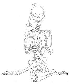 kriotawelt anatomical asanas