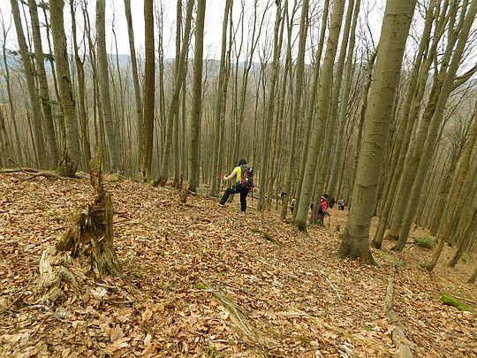 Stok północny pod wierzchołkiem jest bardzo stromy.