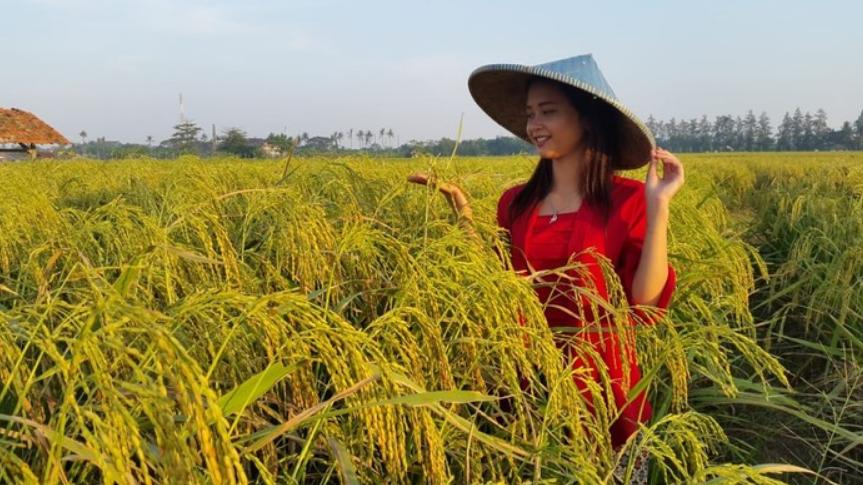Jenis Usaha Dibidang Agraris - Pdf Master 2021