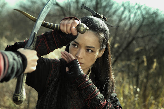 Fotograma: The Assassin (2015)