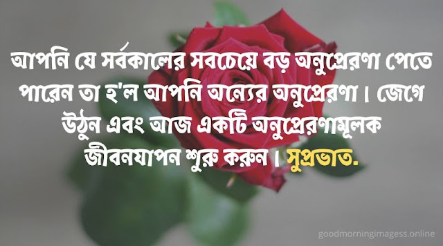 good morning images with bengali quotes,bengali good morning images for whatsapp free download, good morning bengali shayari download, good morning whatsapp bengali, good morning with rabindranath in bengali, bangla suprovat image, good morning quotes in bengali language