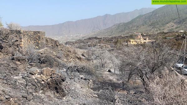 CC reclama la declaración urgente de zona catastrófica para las zonas afectadas por el incendio de La Palma