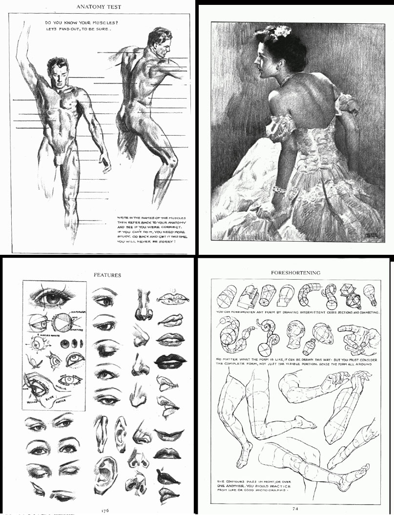 Gurney Journey Loomis's Figure Drawing Book Is Available Again