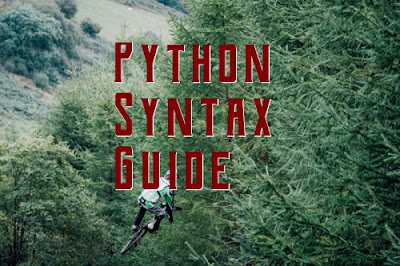 Python syntax guide
