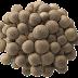 Buy Hypsizygus tessulatus-Buna shimeji mushrooms