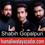 https://humaliwalaazadar.blogspot.com/2019/08/shabih-gopalpuri-nohay-2020.html