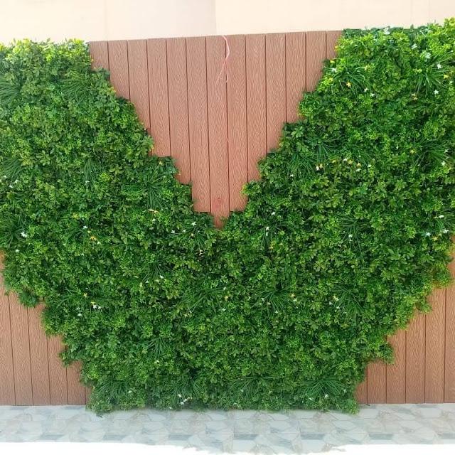شركة تنسيق حدائق سطح المنزل بحائل