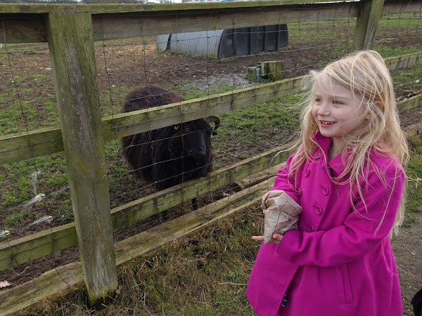 Review of Lee Valley Park Farms in Waltham Abbey, Essex