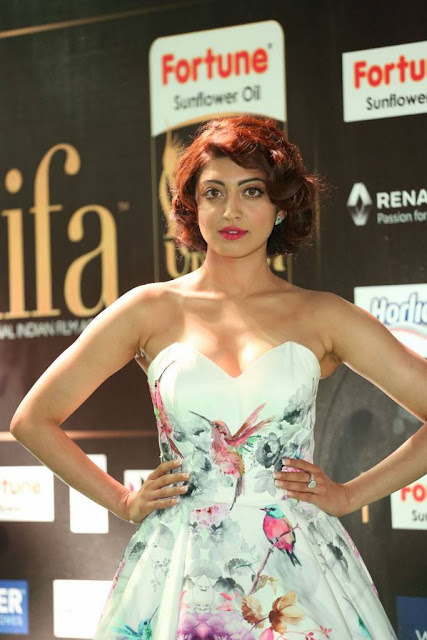 Pranitha Stills At IIFA Awards 2017