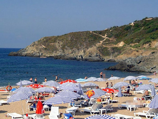 شاطئ داليا