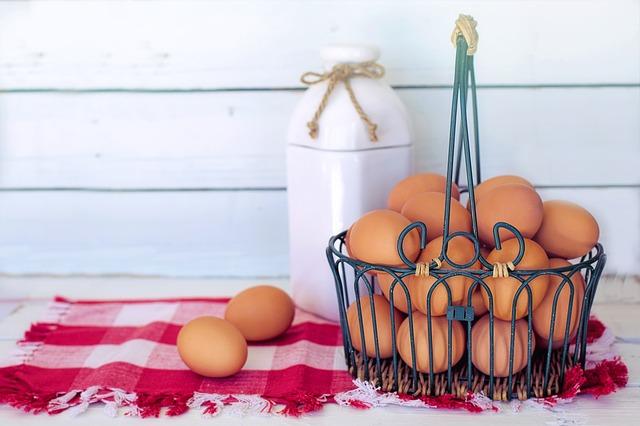 Telur untuk kecerdasan otak