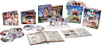 Touhou Genso Wanderer Game Limited Release