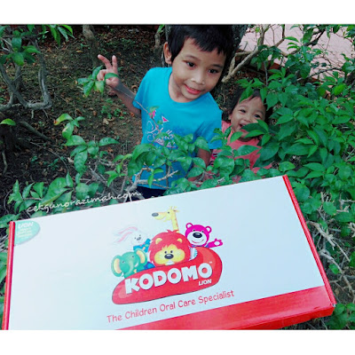 kodomo lion, kodomo lion toothpaste, kodomo lion toothbrush, toothbrush for kids, kids toothpaste