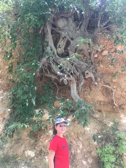 Nos vamos de excursión, Polop, Alcoi, Alcoy, Sant Bonaventura, font de quinzét, el salt, cascada de polop, senderismo, deporte, ruta, excursión, salida con niños, ruta facil, ruta agua,