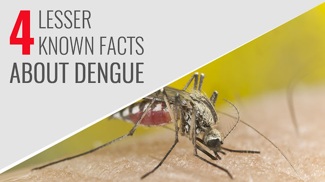 Dengue Symptoms in Infants