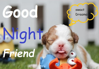 cute good night friends images download hd