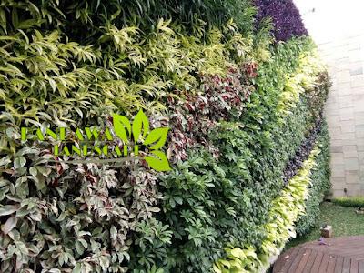Harga pembuatan vertical garden semarang