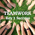 Why Teamwork Is Your Key To Success