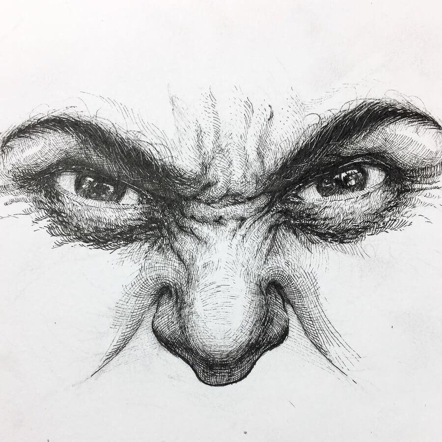 03-A-momnet-of-anger-Alphonso-Dunn-www-designstack-co