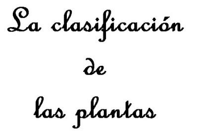 https://cplosangeles.educarex.es/web/edilim/tercer_ciclo/cmedio/las_plantas/la_clasificacion_de_las_plantas/la_clasificacion_de_las_plantas.html