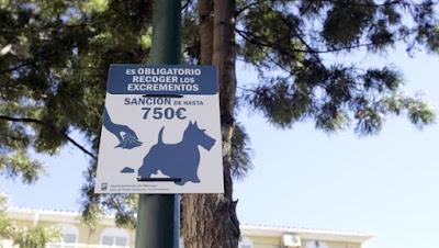 Un cartel avisa de la multa por no retirar las heces de los perros en una calle de Málaga. / SUR