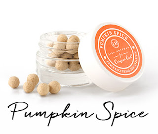 Pumpkin Spice Fragrance Beads available at StoriedCharms.com
