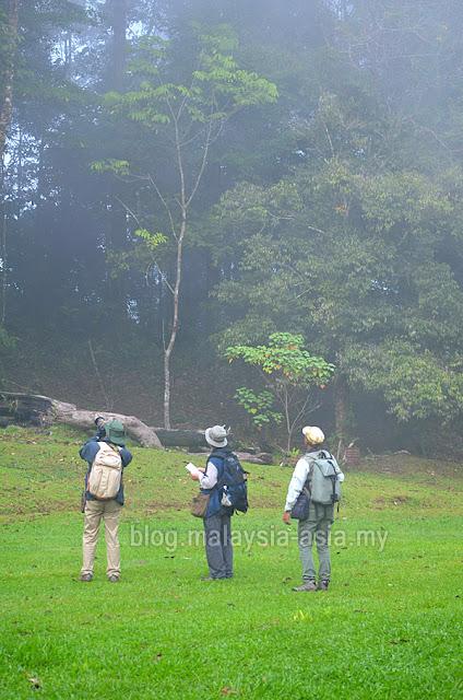 Sarawak Bird Watching