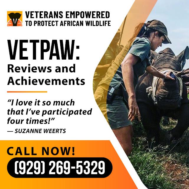 vetpaw reviews