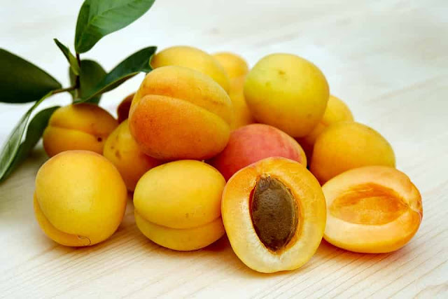 do apricots make you poop