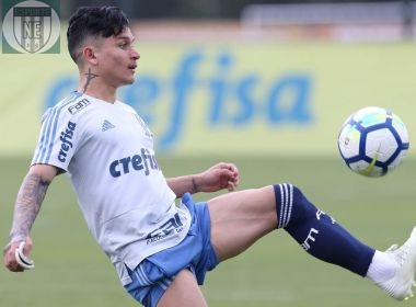 Atacante Artur Victor do Palmeiras
