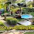 Landscaping Ideas Near Pool