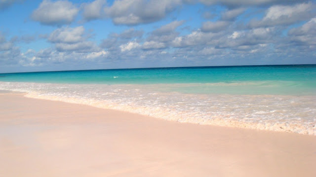 indahnya pantai pink berpadu dengan birunya laut di Pink Sand Beach