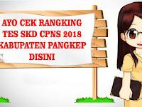 CEK RANKING TES SKD CPNS 2018 KABUPATEN PANGKEP DISINI