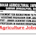 Bihar Agricultural University Recruitment | 310 Assistant Professor Posts