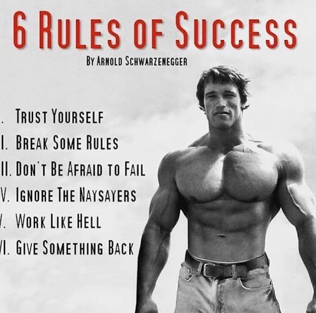 Arnold Schwarzenegger 6 rules of success