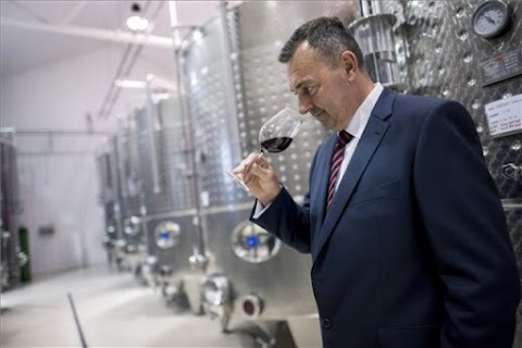 Günzer Tamás borászata nyerte Az Év Pincészete Magyarországon díjat