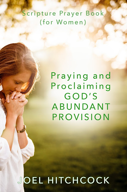 "Joel's Book ""God's Abundant Provision"" (for Women)"