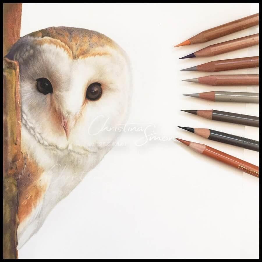 06-Barn-Owl-Cristina-Simon-www-designstack-co