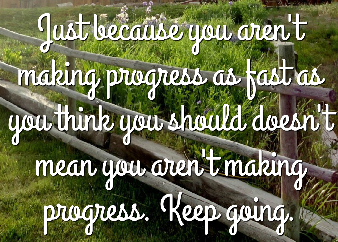 Just because you aren't making progress as fast as you think you should, doesn't mean you aren't making progress. Keep going.