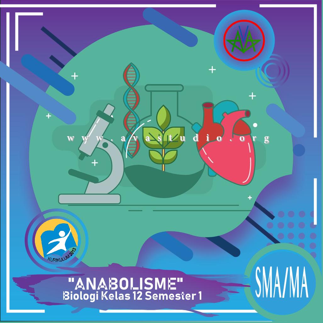 """Download Rangkuman Materi """"Biologi - Anabolisme"""" Kurikulum 2013 Revisi 2020 dalam bentuk File PDF/Docx/PPT"""