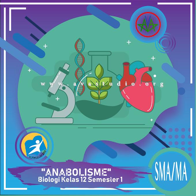 Rangkuman Materi Biologi - Anabolisme