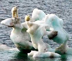 Resultat d'imatges de desglaç dels pols