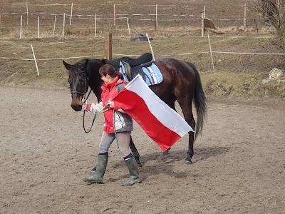 konie, jazda konna, zabawa z koniem, straszenie konia