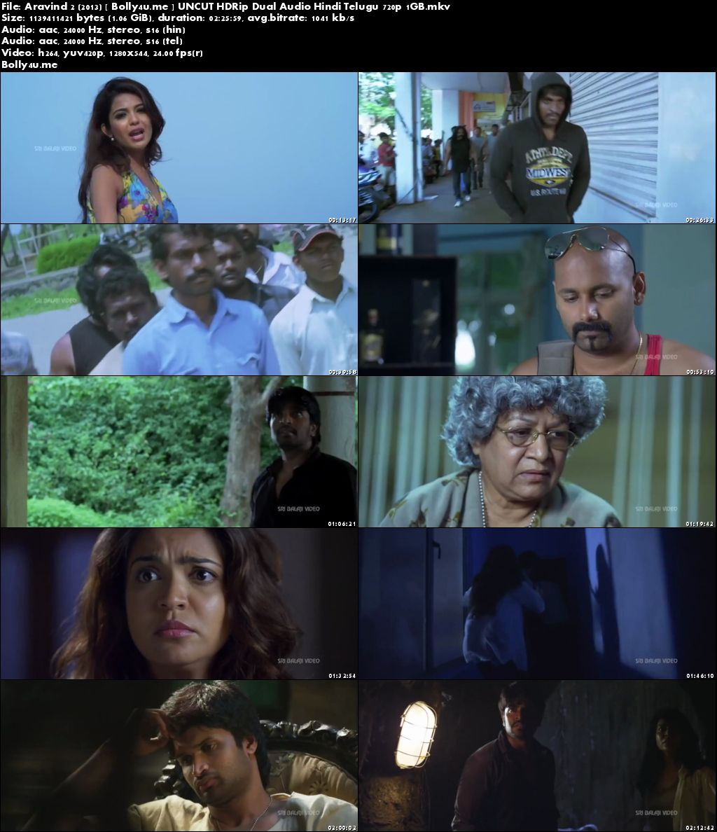 Aravind 2 2013 HDRip 450MB UNCUT Hindi Dual Audio 480p Download