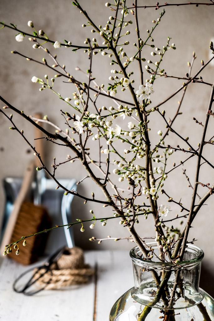 www.fim.works | Fotografie. Wortakrobatik. Wohngefühl. | Lifestyle Blog | Dekoration mit blühenden Sträuchern