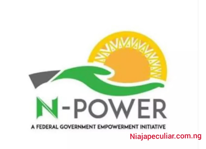 Honorable minister sadiya farouq disregard all fake platform of the official N-POWER