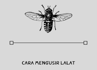 cara mengusir lalat dalam rumah