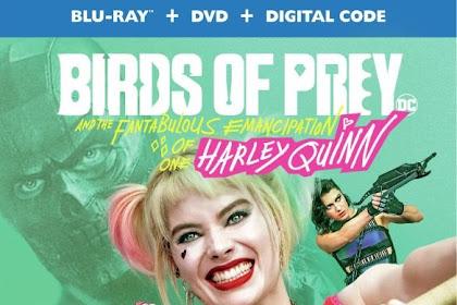 Birds Of Prey 2020 Dual Audio ORG Hindi 480p BluRay 350MB